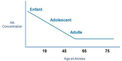 Schéma de la diminution de l'acide hyaluronique dans le derme avec l'âge